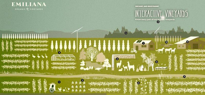 hệ thống trang trại hữu cơ tại emiliana