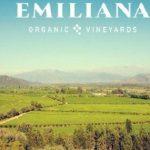 Rượu vang hữu cơ Emiliana