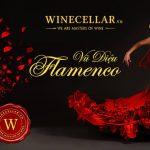 Vũ điệu Flamenco – Trải nghiệm tuyệt vời tại WINECELLAR