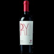 Rượu vang Chi Lê Tabali Payen