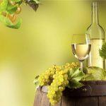 Giống nho Chardonnay