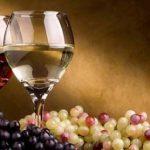 Những sự thật thú vị về rượu vang