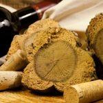 Đôi nét về nút bần của rượu vang