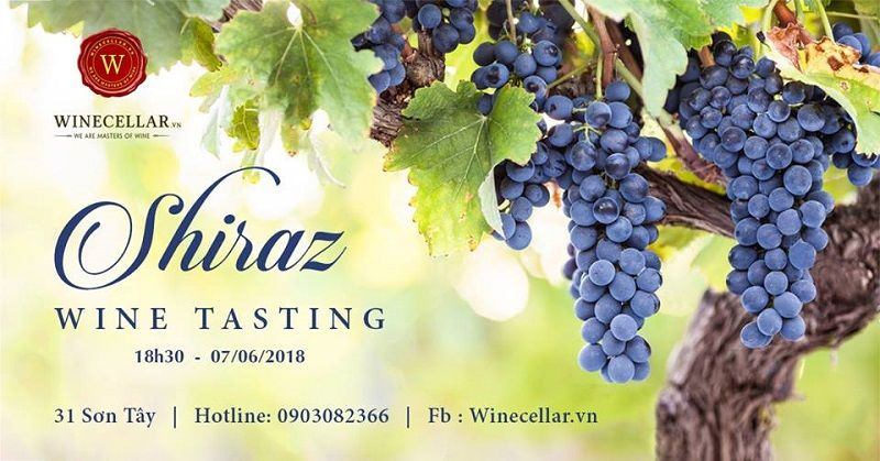 Syrah Wines Tasting