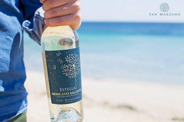 Rượu vang cho ngày hè
