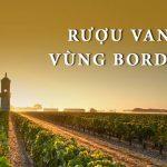 Rượu vang đỏ vùng Bordeaux