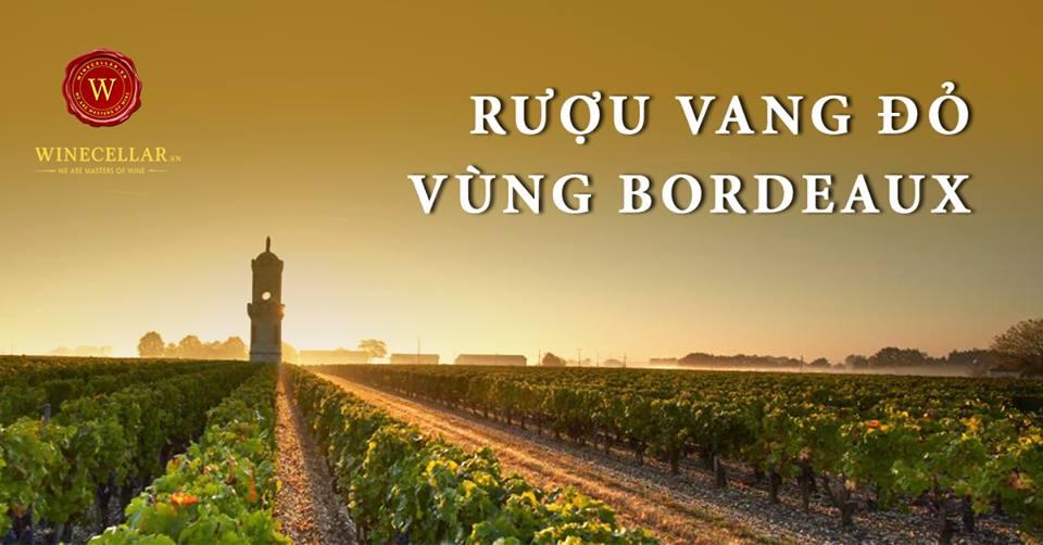 Rượu vang đỏ vùng Bordeaux - Bordeaux Blend Wine
