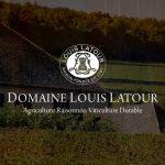 Louis Latour – Niềm tự hào của Burgundy