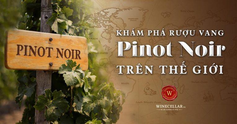 khám phá rượu vang pinot noir trên thế giới