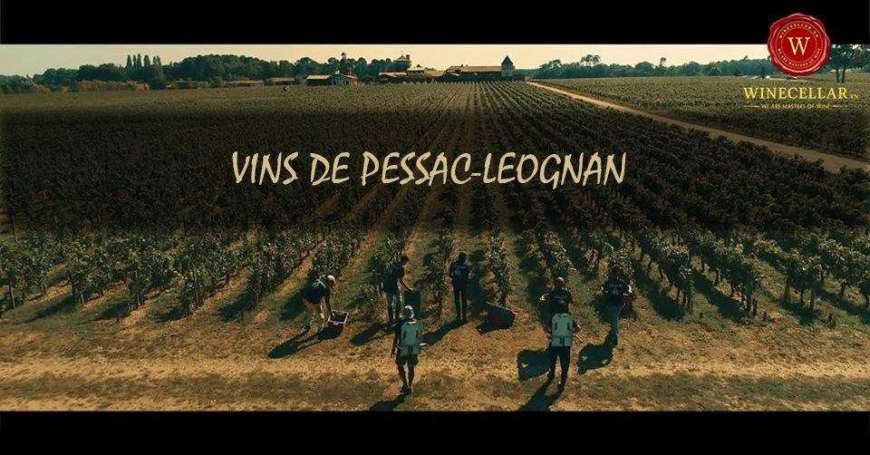 Tìm hiểu về vùng rượu vang Pessac-Leognan