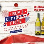 American Independence Day Promotion