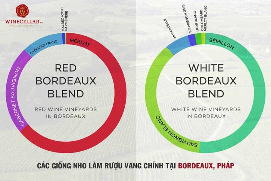 Semillon thường là giống nho chủ đạo trong phong cách Bordeaux White Blend