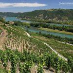 Các vùng rượu vang nổi tiếng tại Pháp – phần 3