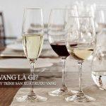 Rượu vang là gì? Tìm hiểu quy trình sản xuất rượu vang