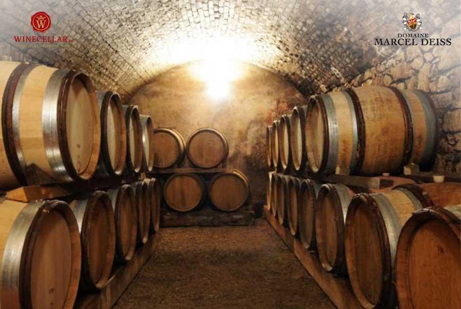 Ảnh 2: Hầm ủ rượu tại Domaine Marcel Deiss