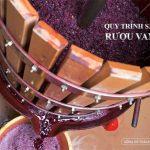 Tìm hiểu quy trình sản xuất rượu vang đỏ