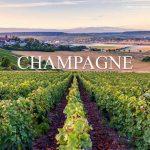 Các vùng rượu vang nổi tiếng tại Pháp – phần 2