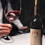 Hướng dẫn cách lắc và ngửi rượu vang đúng chuẩn
