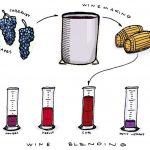 Khám phá việc pha trộn rượu vang của nhà sản xuất rượu
