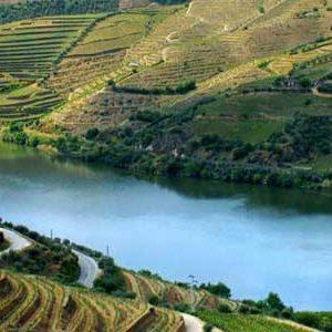 Rượu vang Bồ Đào Nha