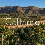 Tìm hiểu nền văn hóa rượu vang California