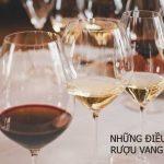 Những điều thú vị về rượu vang Ý