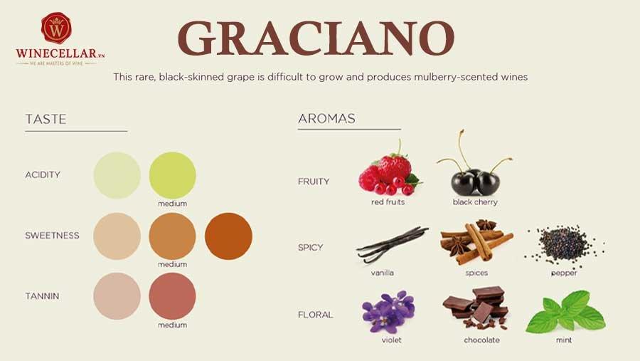 Tổng quan hương vị rượu vang Graciano