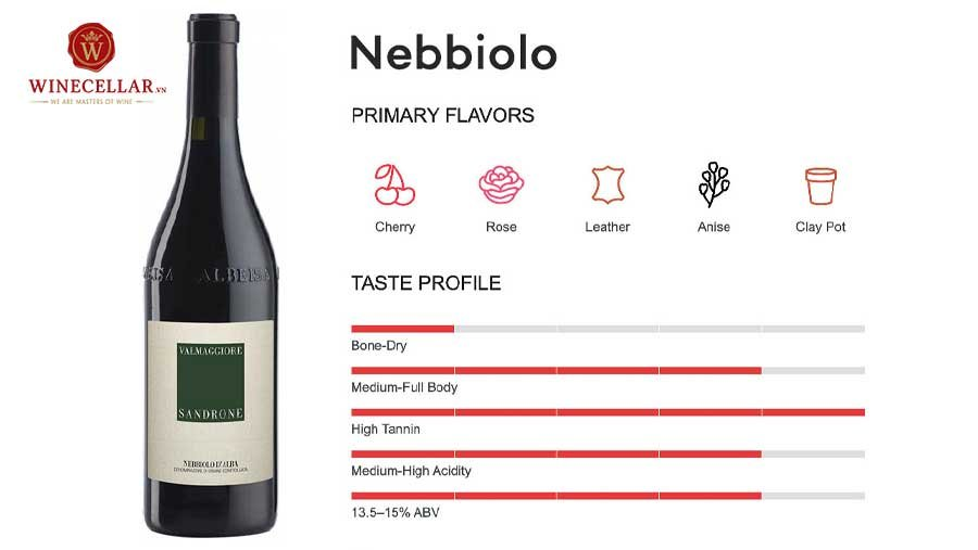 tổng quan hương vị rượu vang Nebbiolo