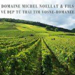Domaine Michel Noellat & Fils – Vẻ đẹp từ trái tim Vosne-Romanée