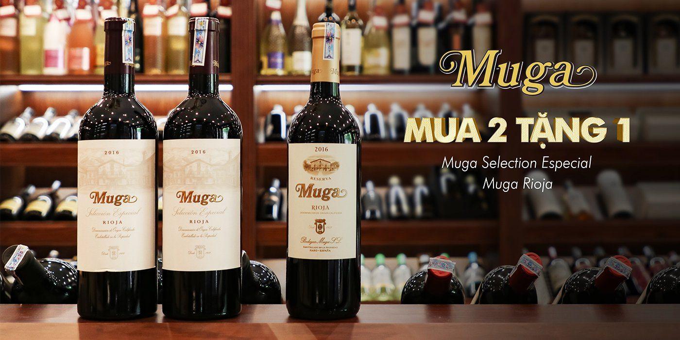 Khám phá rượu vang Rioja đậm đà